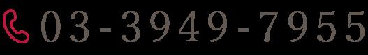 0339497955